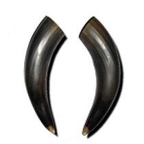"""10"""" Bull Horns"""