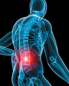 Low Back Pain - Reasons, Preventions, Early Treatment by Dr. Manoochehr Shakeri