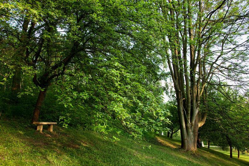 lezaky_park_198af.jpg