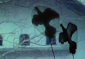 Juste à côté, les pigeons.JPG