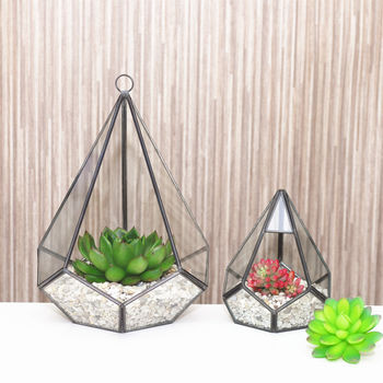 Geometric terrariums courtesy of not on the high street