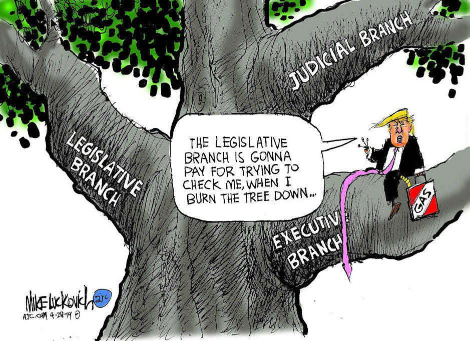 Trump - The Branches of Government.jpg