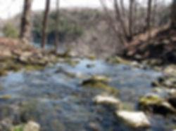 Ontario, Canada - Early Spring.jpg