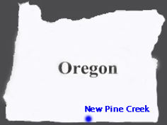 State-of-Oregon - New Pine Creek.jpg