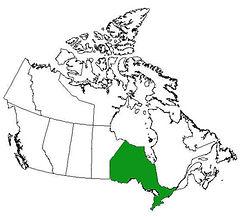 Canada - Ontario.jpg