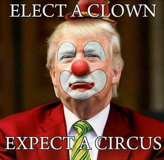 Trump - Elect A Clown.jpg
