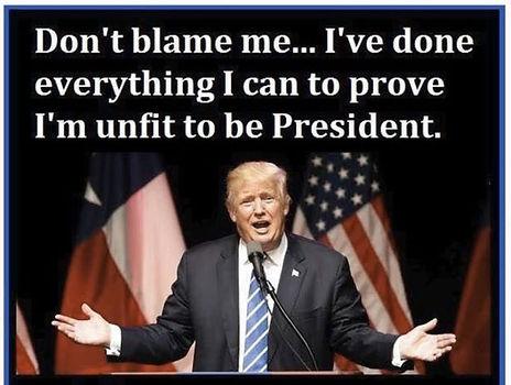 Trump---don't-Blame-Me---web.jpg