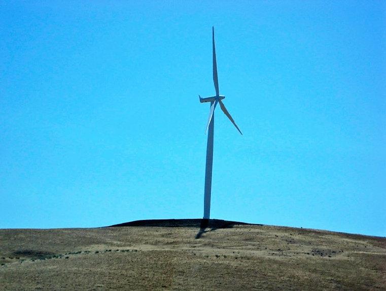 Windmill - Karen Davidson-Fletcher.jpg