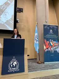 Interpol 2019