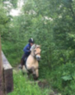 Nordmarka rideskole ridekurs feltritt