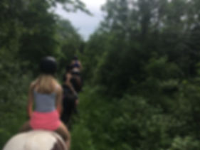 Nordmarka rideskole ridekurs turridning