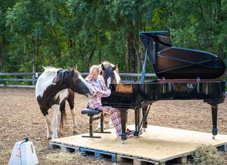 En svært vellykket utendørskonsert med Aksel Kolstad