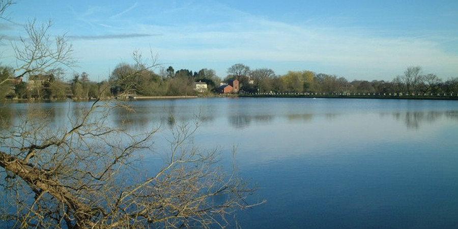 Earlswood Lakes.jpg