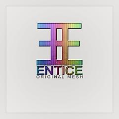ENTICE_LOGO - ORIGINAL_MESH - Rainbow.pn