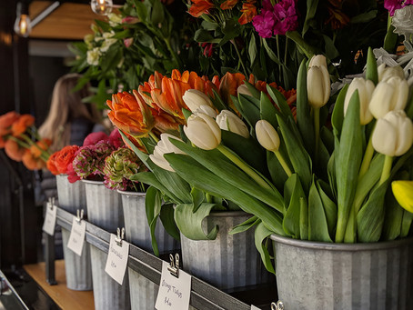 April blooms, bow knives and (dried) blueberries at the market tomorrow!