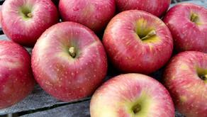 Apples, smoked ricotta and smokin' jazz
