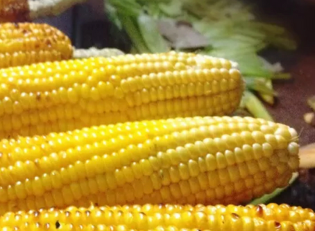 The pizza truck is back and Fort Hill Farm's corn is in!
