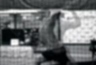 Screen Shot 2020-01-24 at 10.36.32 AM.pn