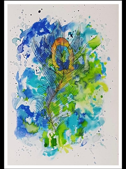 Peacock Feathers 1
