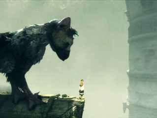 Why Trico Matters