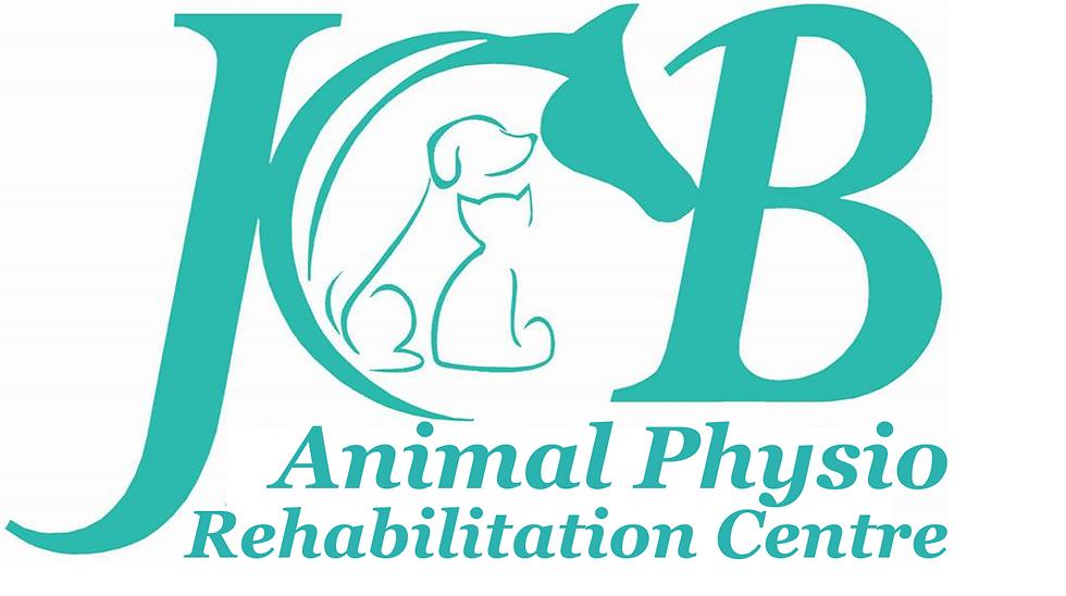 JCB logo 2.png