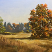 Autumn at Discovery Park, Oil on Panel, 8 x 10, 2017, Private Collection