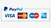 lasergame sport aventure logo Paypal car