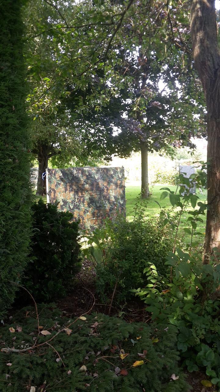 lasergame jardin 2.jpg