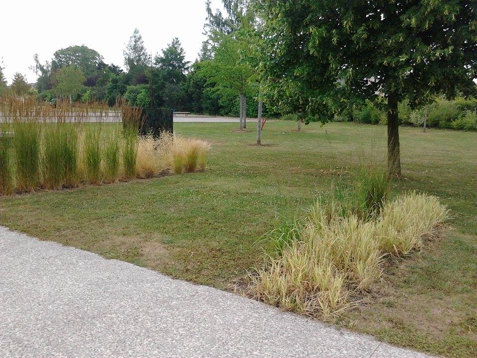 parc communal (10).jpg
