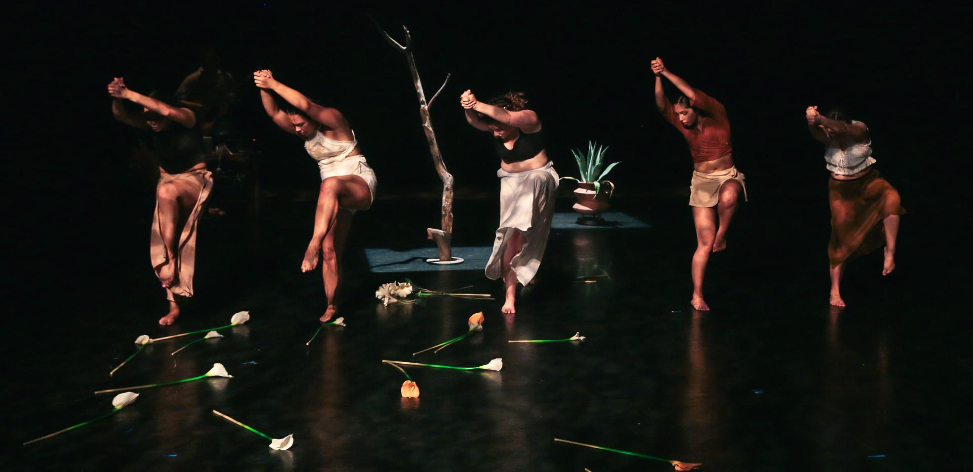 Agave Americana by A.Ordaz Dance