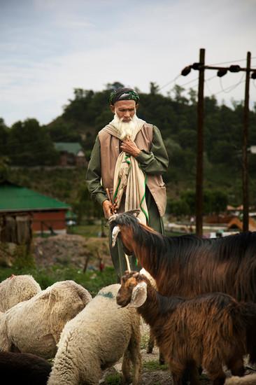 Srinagar, Jammu and Kashmir, India