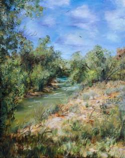 Bosky River