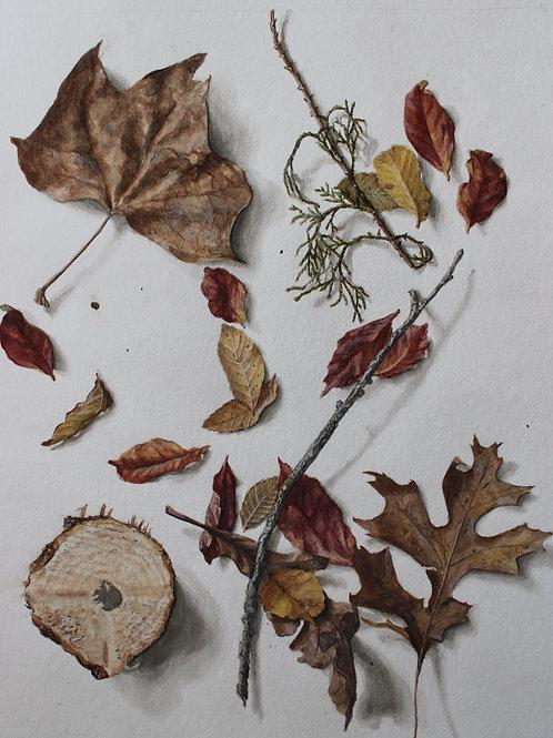 Winter Leaves Trompe l'oeil