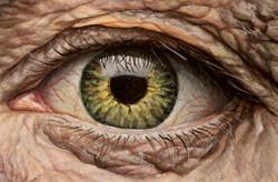 Wise Eye