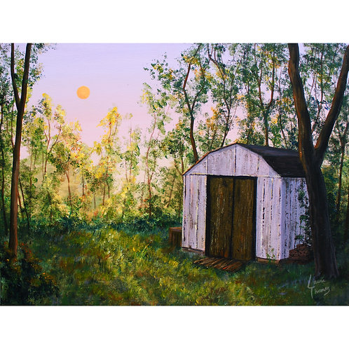 Sundown by the Old Shed