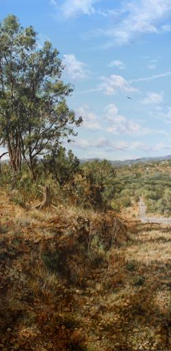 Curlo's Ridge