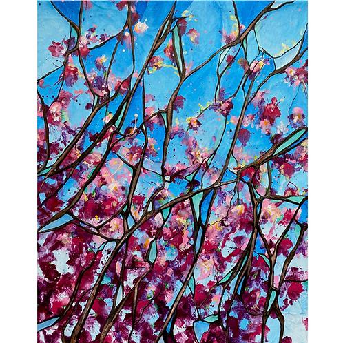 In Bloom: Redbud