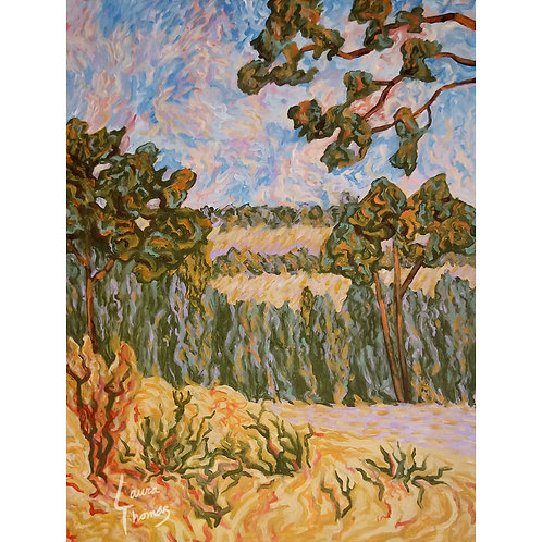 Impressionist's Hill Country