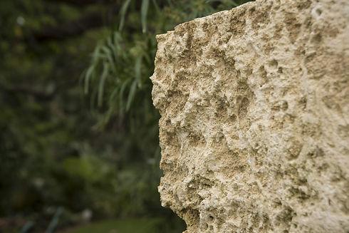 Snead-Island-Oolite-Detail.jpg