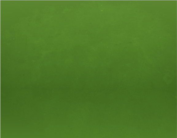 background_verde2x.png