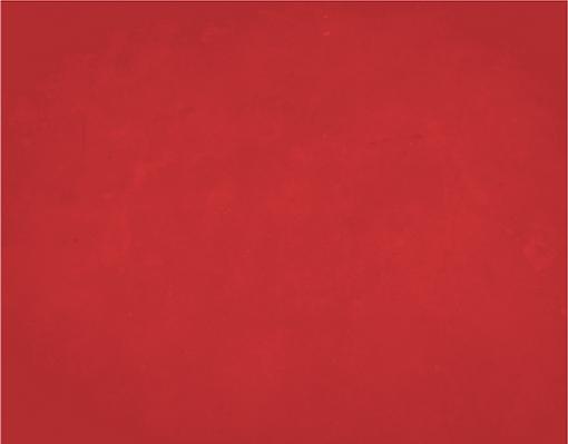 background_vermelho2x.png