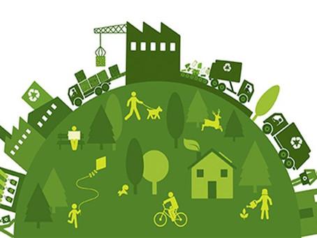 Desenvolvimento Sustentável na Amazonia