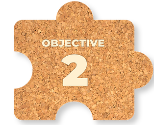 OBJECTIVES-03.png