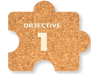 OBJECTIVES-02_edited.png