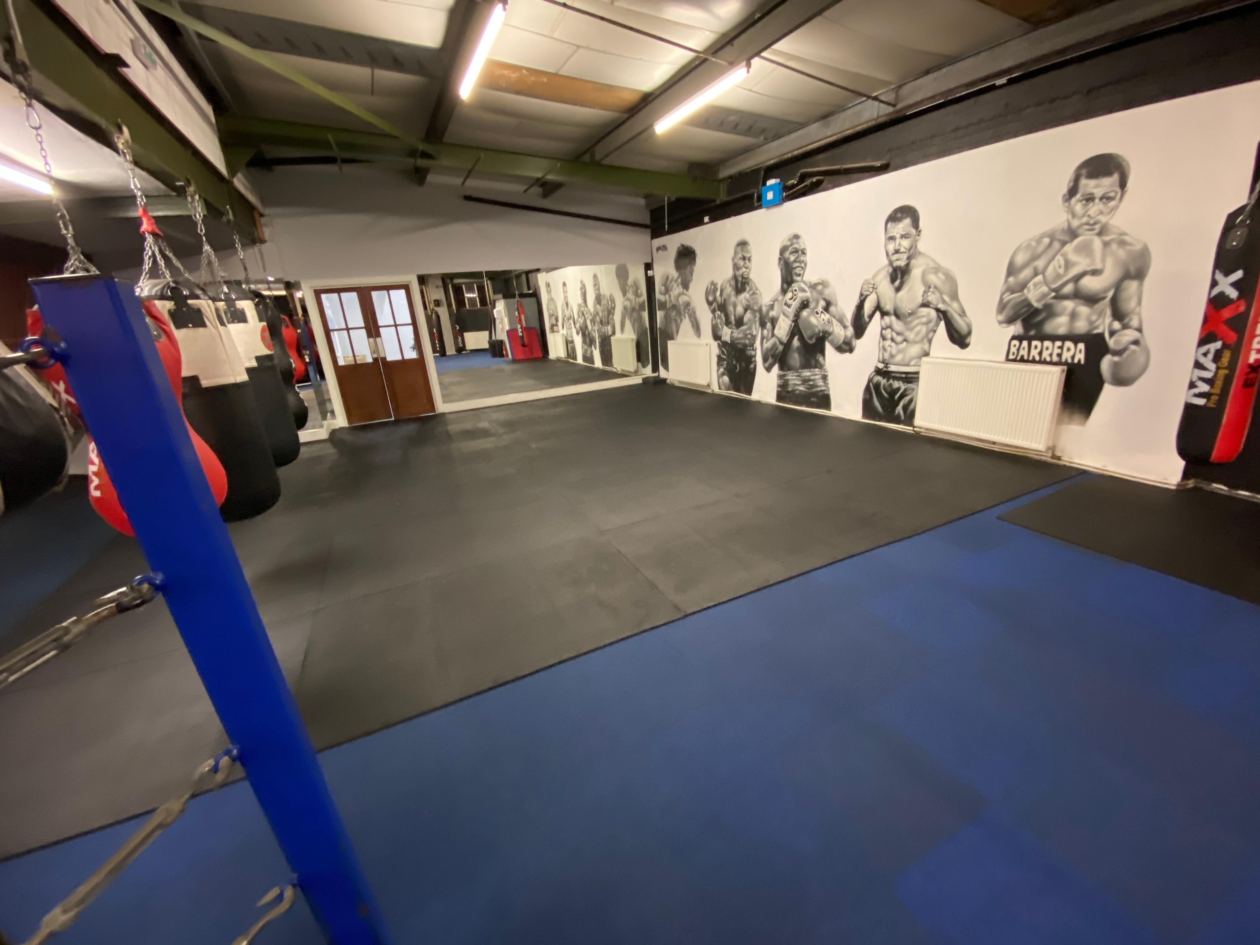STUDIO ONE (Boxing, MMA, Fitness ETC)