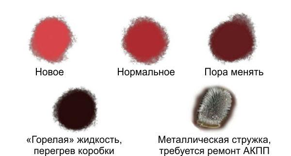 oil11.jpg
