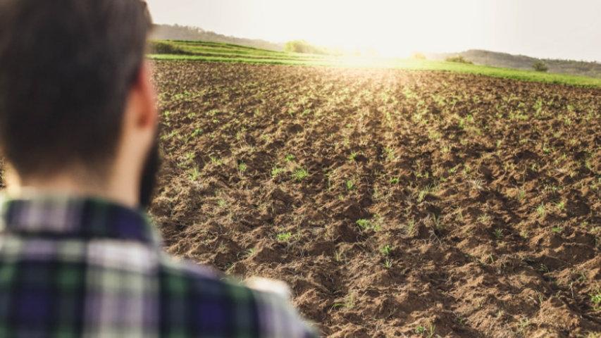 giovani agricoltura.jpg