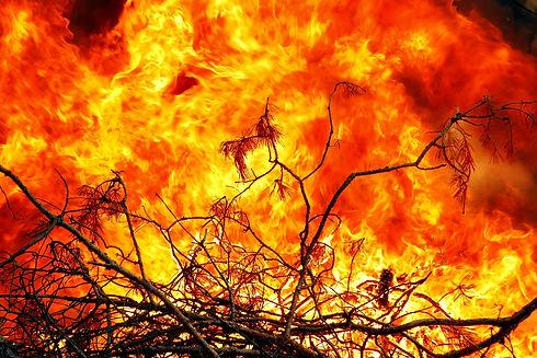 Incendi+boschivi.jpg