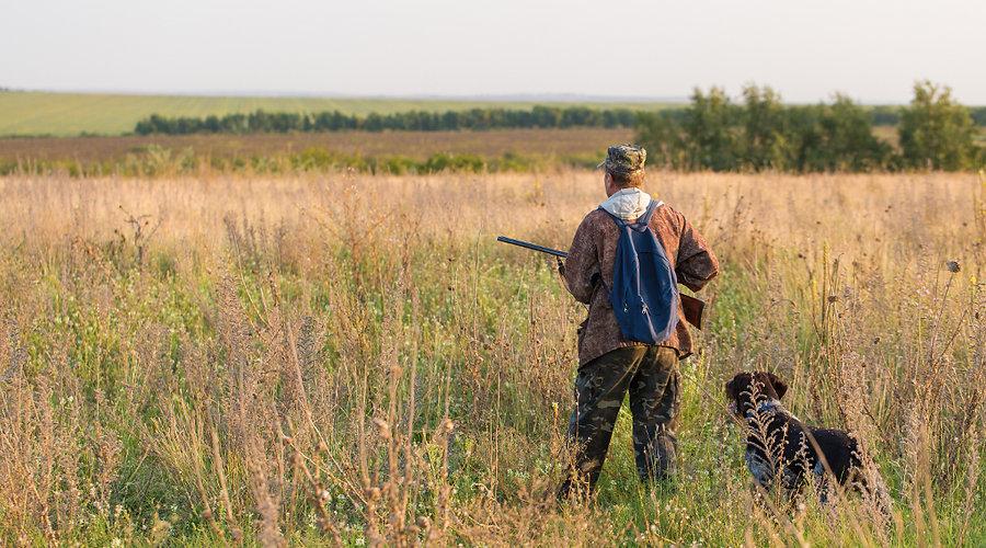 caccia.jpg