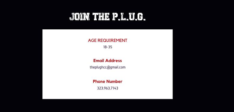 THE PLUG website.png